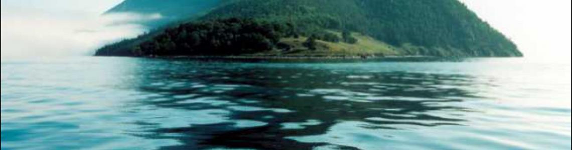 Черный Чай, насыщенный чистейшим воздухом Байкала